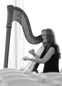 contemporary music harpist orlando